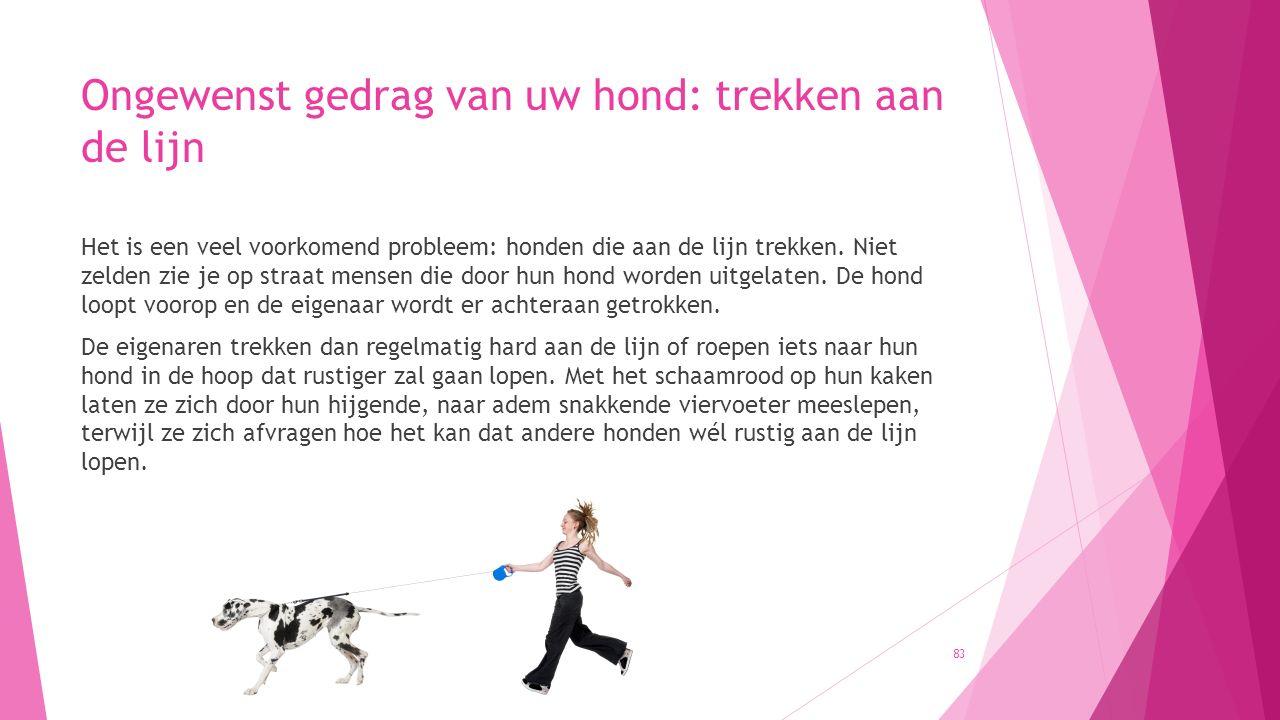 Ongewenst gedrag van uw hond: trekken aan de lijn Het is een veel voorkomend probleem: honden die aan de lijn trekken. Niet zelden zie je op straat me