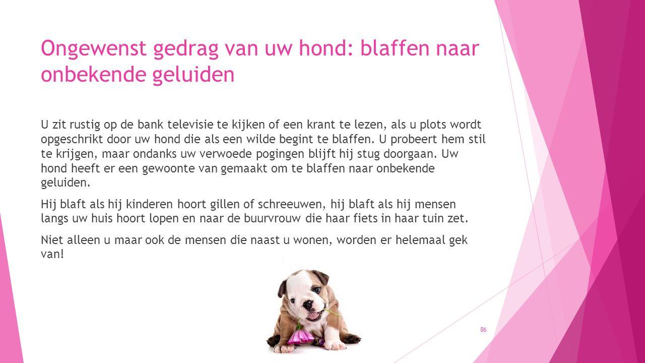 Ongewenst gedrag van uw hond: blaffen naar onbekende geluiden U zit rustig op de bank televisie te kijken of een krant te lezen, als u plots wordt opg
