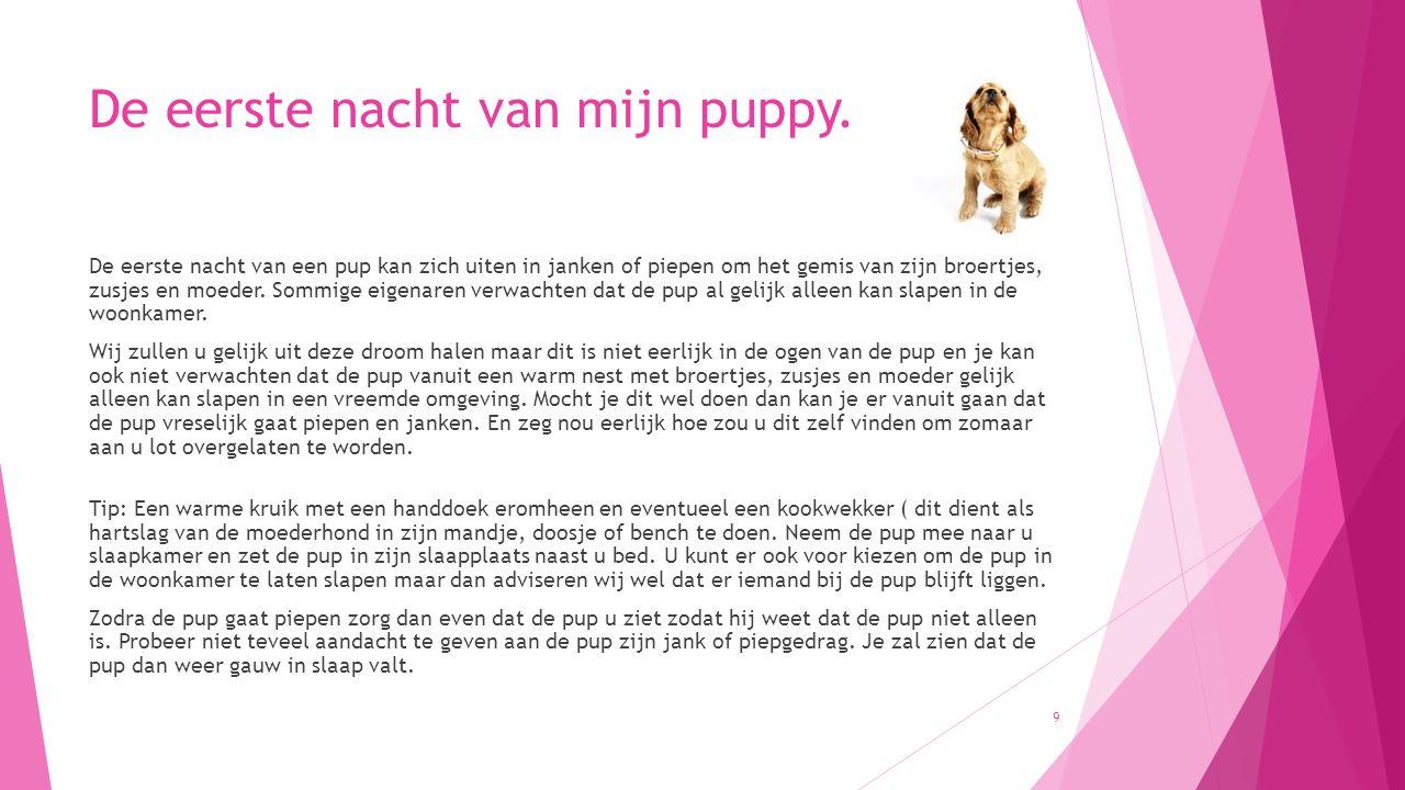 Oefening aanleren naam pup  Begin de oefeningen in een prikkelarme omgeving, bijv.