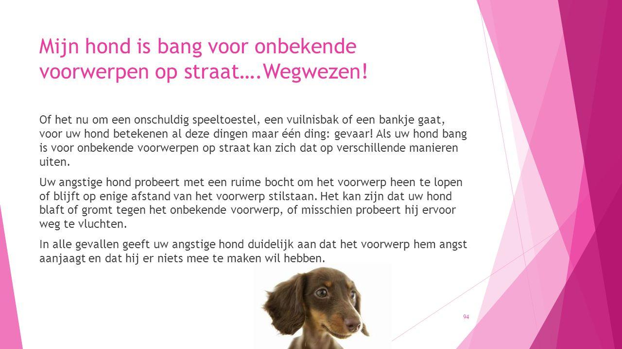 Mijn hond is bang voor onbekende voorwerpen op straat….Wegwezen! Of het nu om een onschuldig speeltoestel, een vuilnisbak of een bankje gaat, voor uw