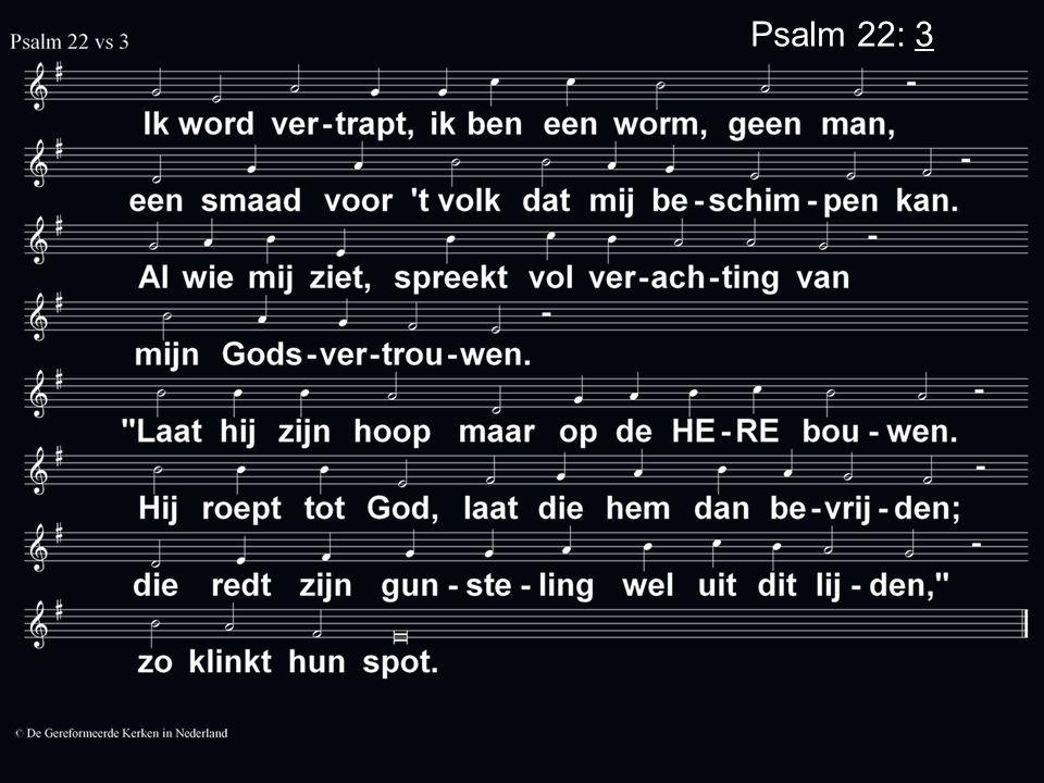 Psalm 22: 3