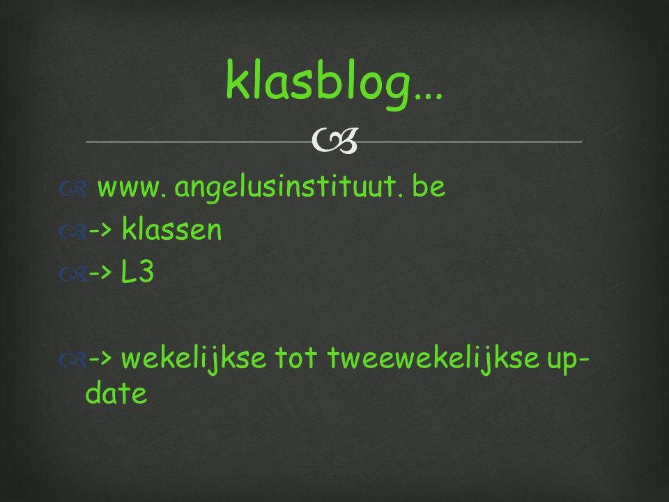   www.angelusinstituut.
