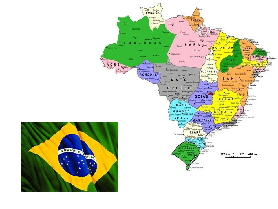 Acht jaar na de ontdekking van Amerika door de Spanjaarden, de Portugezen kwamen in een gebied waar er een boom (Caesalpinia echinata) gebruikt door de Indianen van het bos.