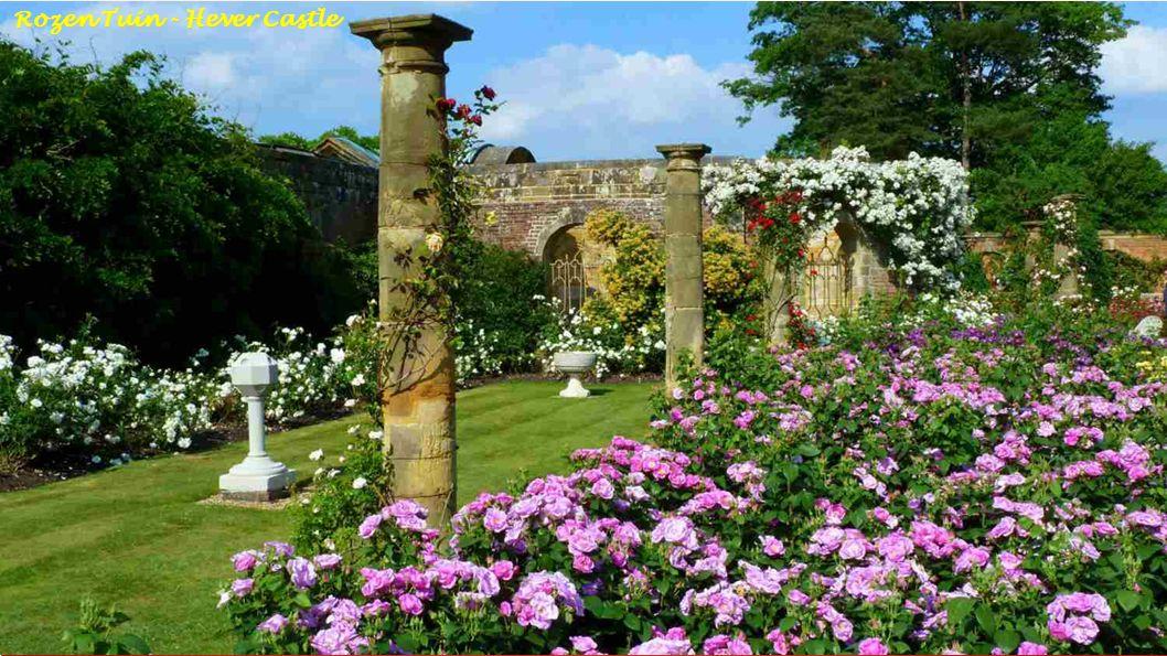 Rozen Tuin - Hever Castle