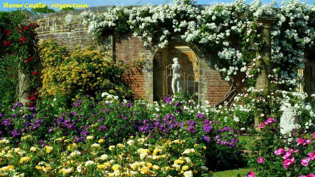 Hever Castle - rozen tuin