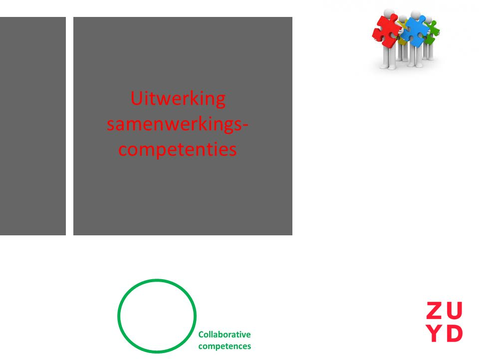 Uitwerking samenwerkings- competenties