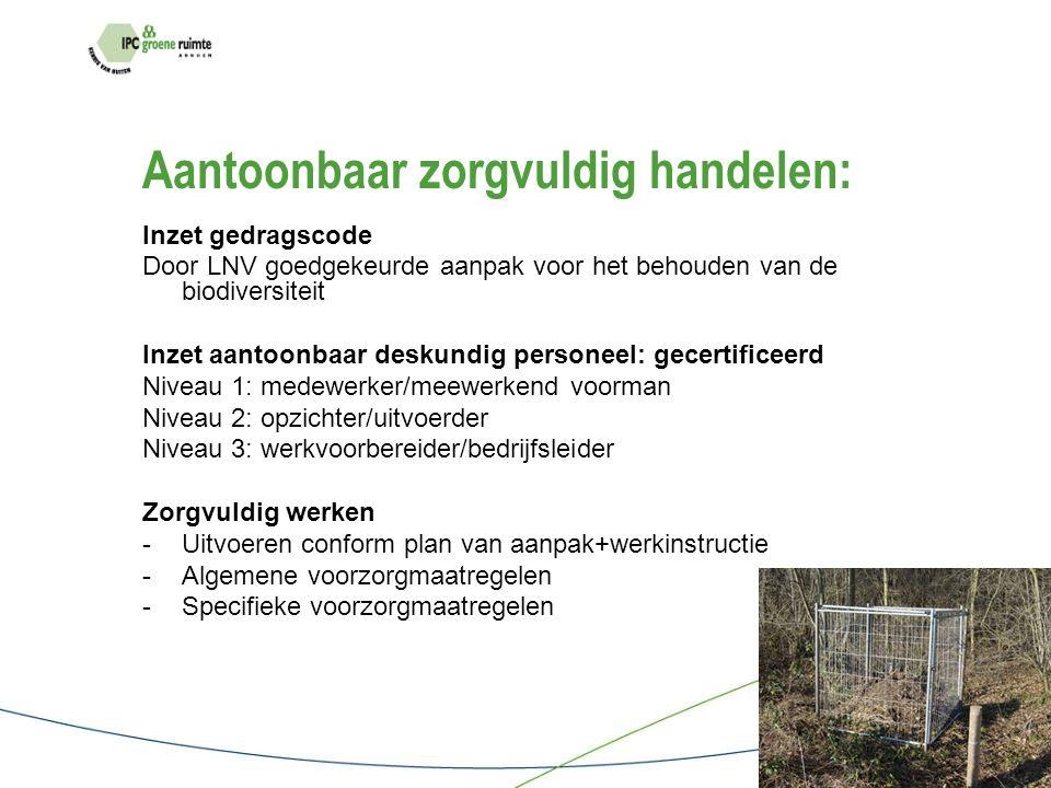 Praktijksituatie Opdracht voor een tuinrenovatie: - Nieuw ontwerp - Bestaande inrichting: verwijderen beplanting