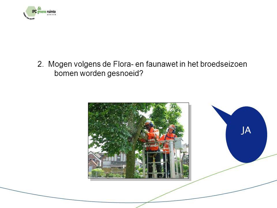 2. Mogen volgens de Flora- en faunawet in het broedseizoen bomen worden gesnoeid JA