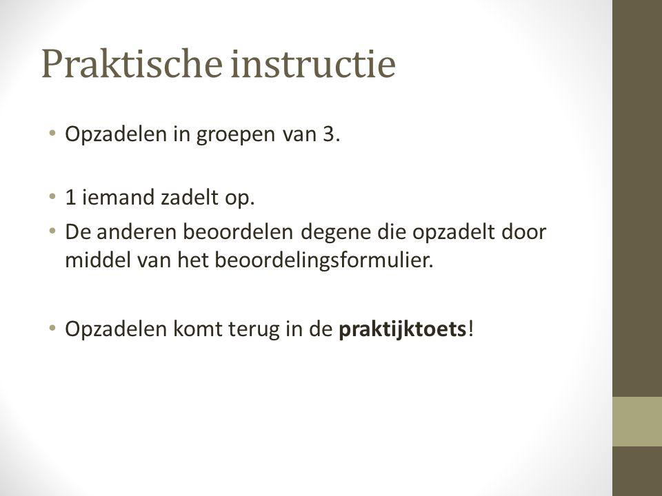 Praktische instructie Opzadelen in groepen van 3.1 iemand zadelt op.