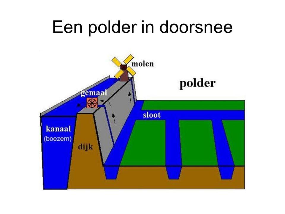 Een polder in doorsnee