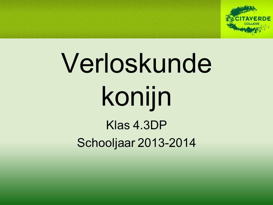Verloskunde konijn Klas 4.3DP Schooljaar 2013-2014
