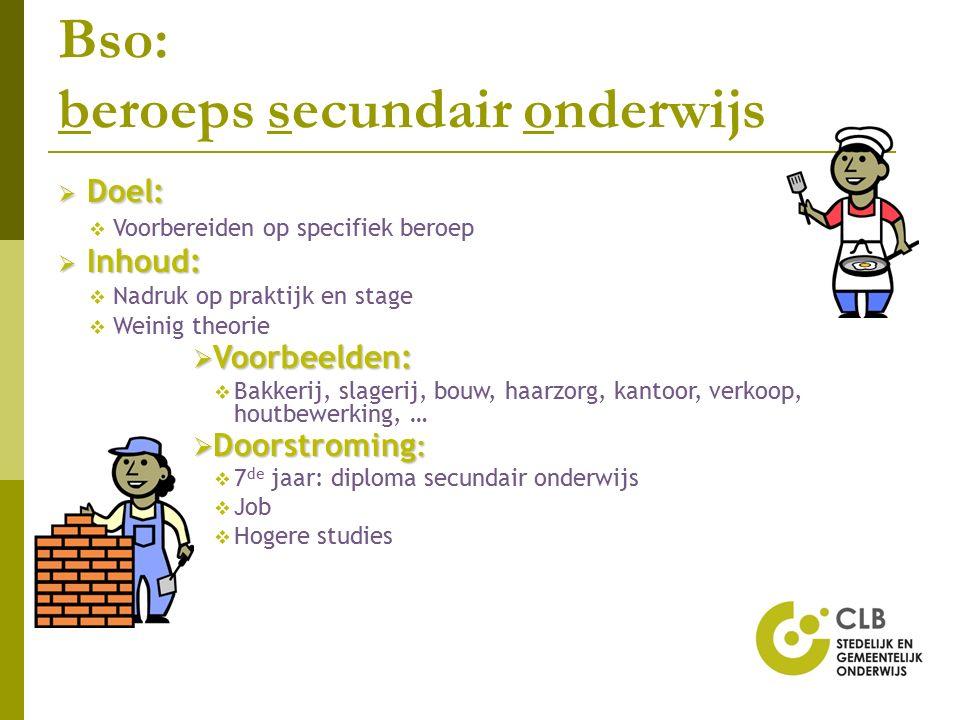 Bso: beroeps secundair onderwijs  Doel:  Voorbereiden op specifiek beroep  Inhoud:  Nadruk op praktijk en stage  Weinig theorie  Voorbeelden: 
