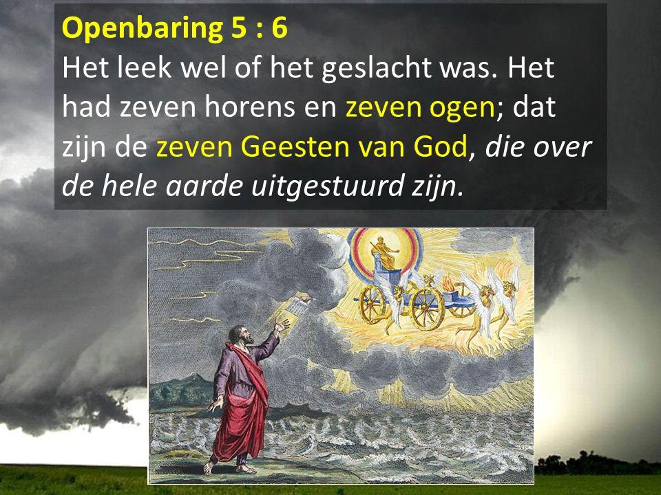 Openbaring 5 : 6 Het leek wel of het geslacht was. Het had zeven horens en zeven ogen; dat zijn de zeven Geesten van God, die over de hele aarde uitge