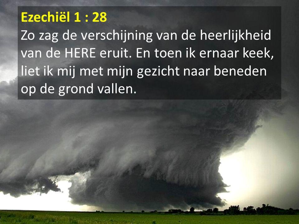 Ezechiël 1 : 28 Zo zag de verschijning van de heerlijkheid van de HERE eruit. En toen ik ernaar keek, liet ik mij met mijn gezicht naar beneden op de