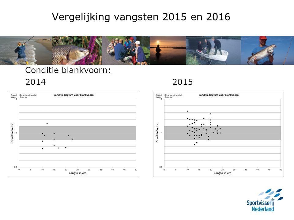 Vergelijking vangsten 2015 en 2016 Conditie blankvoorn: 2014 2015