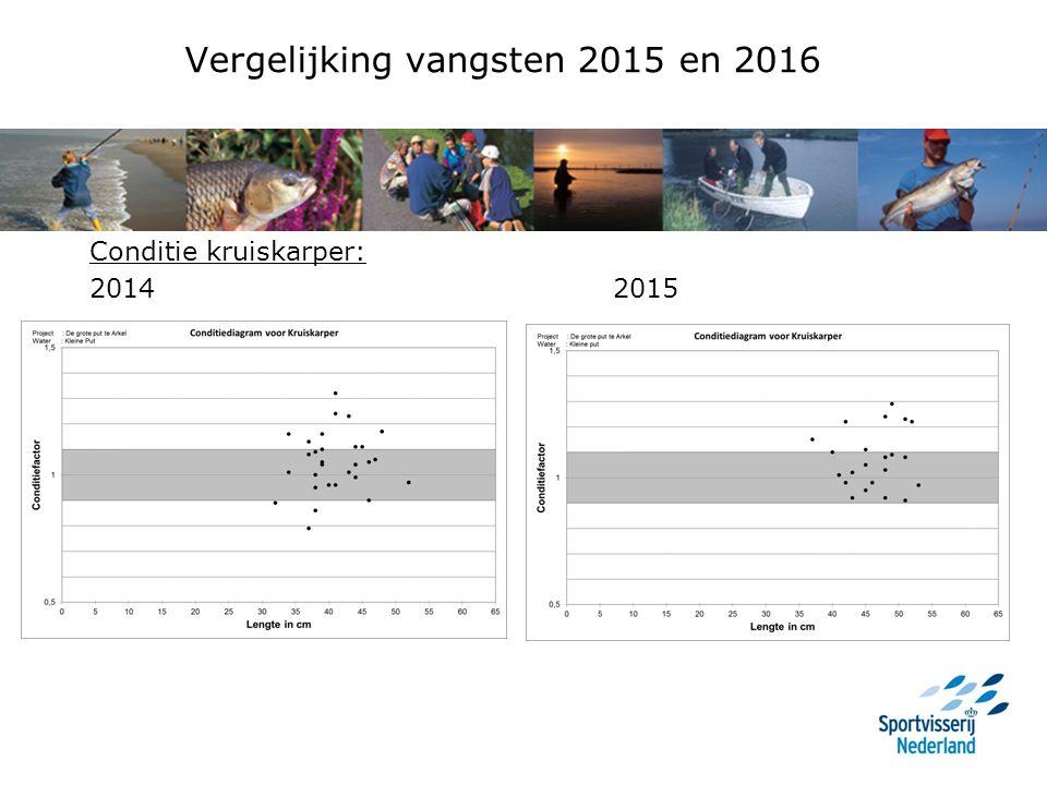 Vergelijking vangsten 2015 en 2016 Conditie kruiskarper: 2014 2015