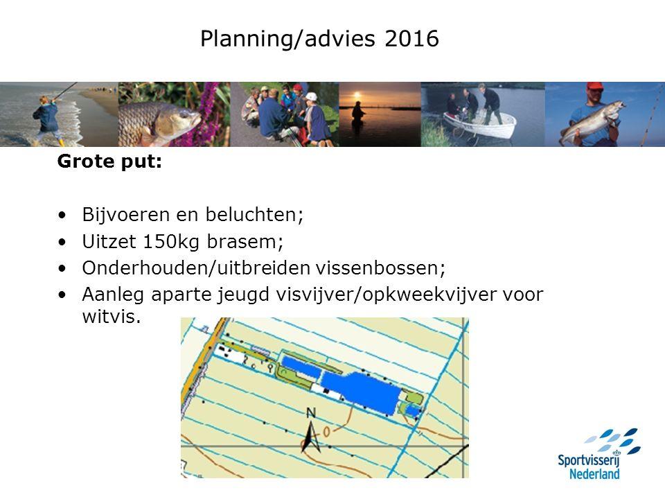 Planning/advies 2016 Grote put: Bijvoeren en beluchten; Uitzet 150kg brasem; Onderhouden/uitbreiden vissenbossen; Aanleg aparte jeugd visvijver/opkweekvijver voor witvis.