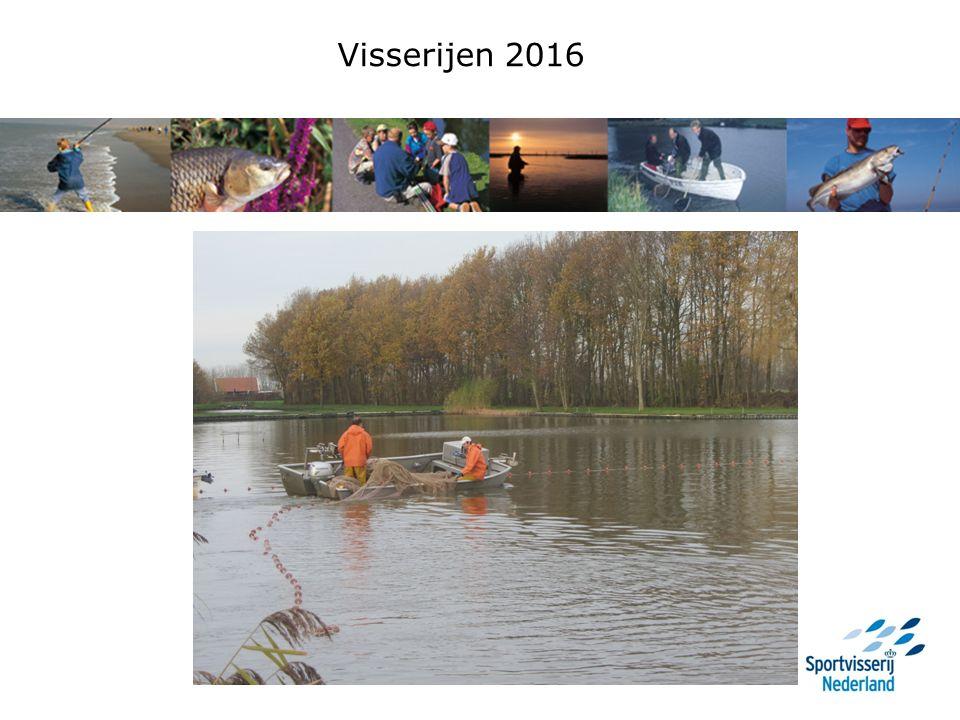 Vergelijking vangsten 2015 en 2016 Kleine put: Biomassa 2014:926,8 kg/ha 2015:768,9 kg/ha