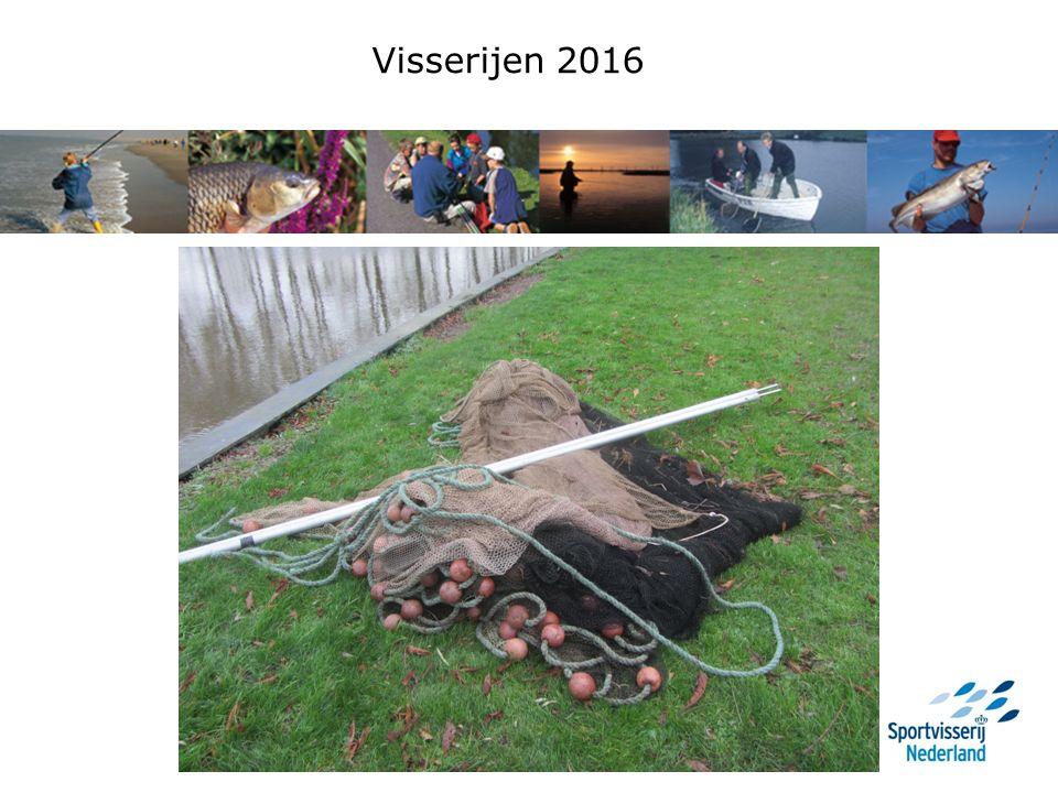 Vergelijking vangsten 2015 en 2016 LF spiegelkarper: 20142015