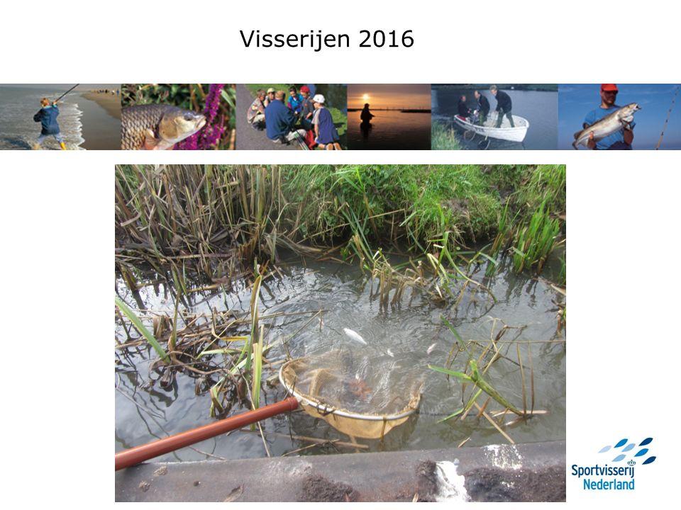 Vergelijking vangsten 2015 en 2016 LF Brasem: 20142015