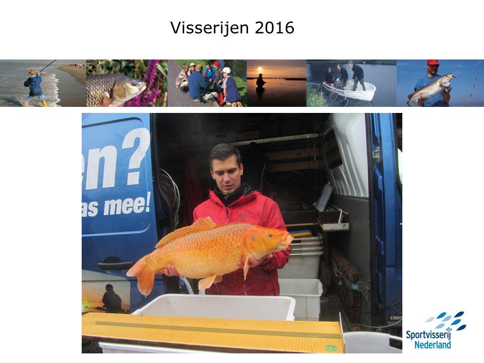 Vergelijking vangsten 2015 en 2016 Conditie brasem: 2014 2015