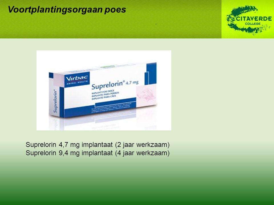 Voortplantingsorgaan poes Suprelorin 4,7 mg implantaat (2 jaar werkzaam) Suprelorin 9,4 mg implantaat (4 jaar werkzaam)