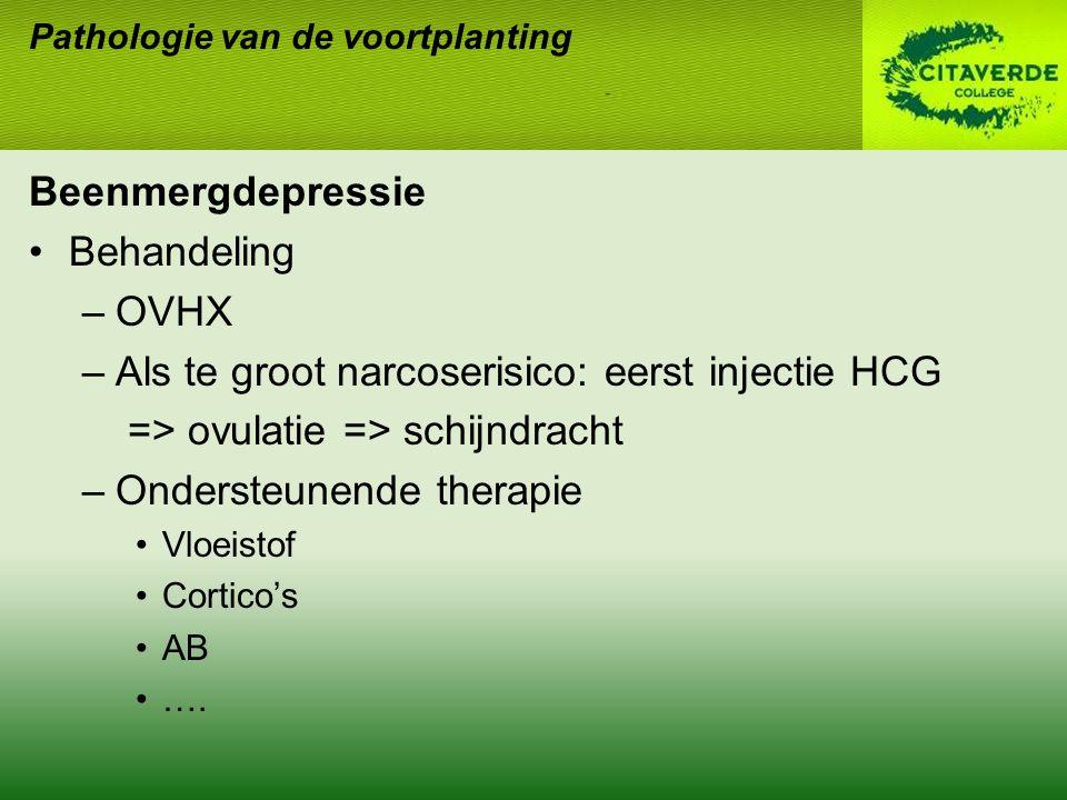 Beenmergdepressie Behandeling –OVHX –Als te groot narcoserisico: eerst injectie HCG => ovulatie => schijndracht –Ondersteunende therapie Vloeistof Cortico's AB ….