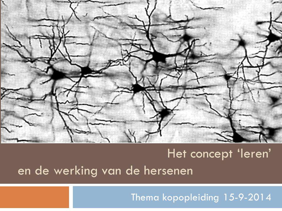 Het concept 'leren' en de werking van de hersenen Thema kopopleiding 15-9-2014