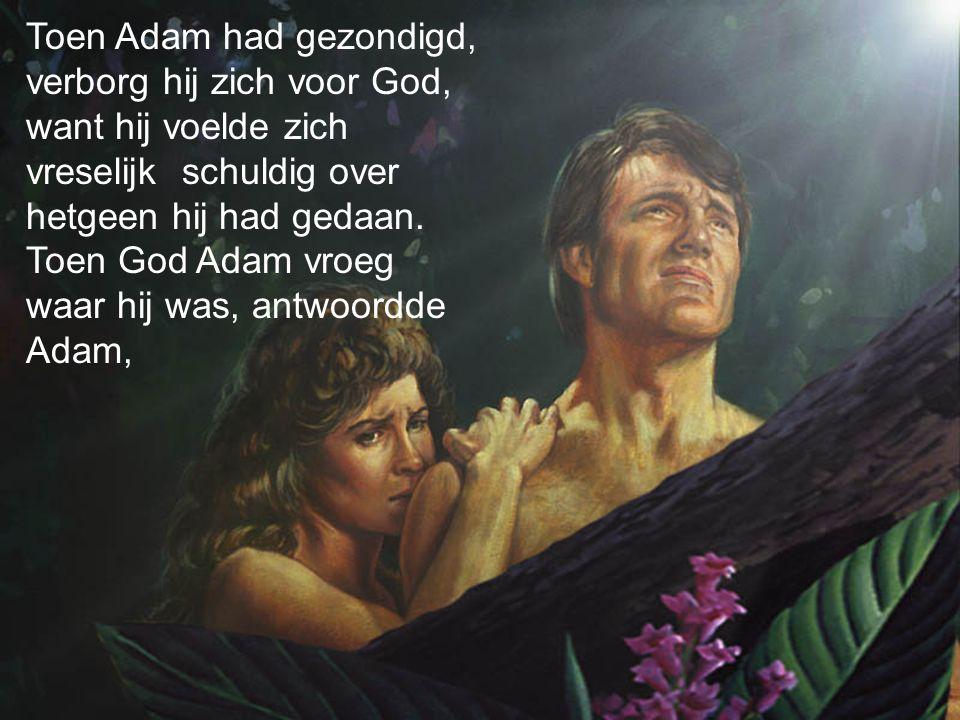 Toen Adam had gezondigd, verborg hij zich voor God, want hij voelde zich vreselijk schuldig over hetgeen hij had gedaan.