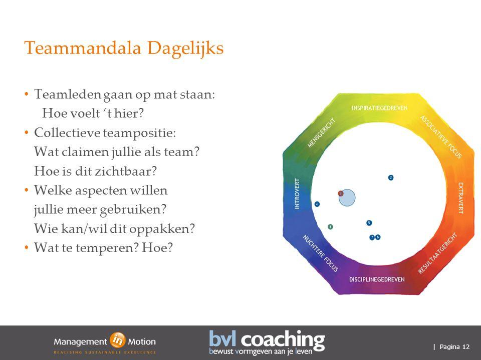| Pagina 12 Teammandala Dagelijks Teamleden gaan op mat staan: Hoe voelt 't hier.