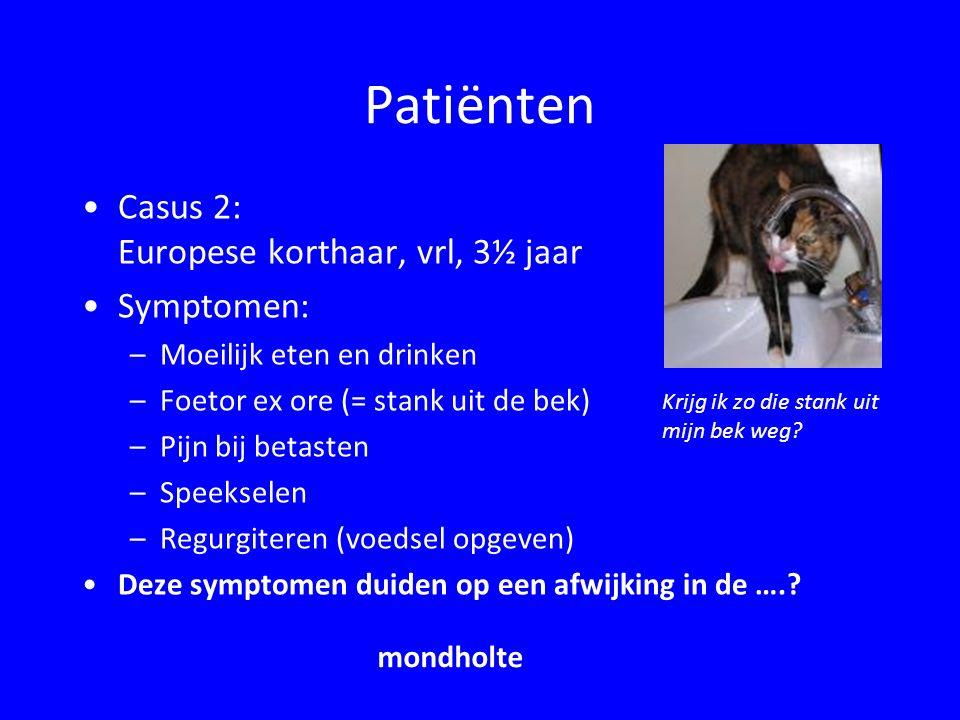 Patiënten Casus 3: Duitse herder, reu, 11 jaar Symptomen: –Slechte eetlust, sloom, mager –Braken en diarree –Vergrote buikomvang –PU/PD –Icterus –Suf –Epileptische aanval gehad Deze symptomen duiden op een afwijking van de …..