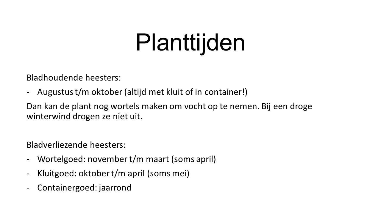 Planttijden Bladhoudende heesters: -Augustus t/m oktober (altijd met kluit of in container!) Dan kan de plant nog wortels maken om vocht op te nemen.