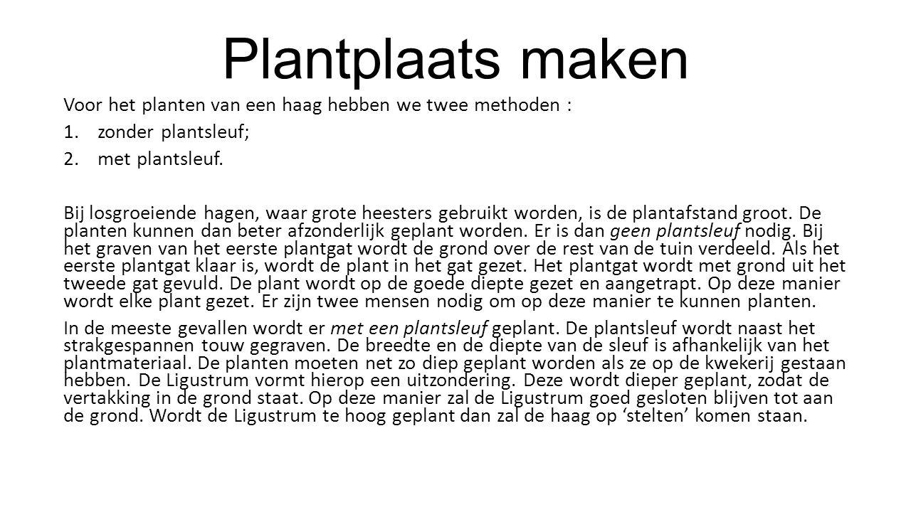 Plantplaats maken Voor het planten van een haag hebben we twee methoden : 1.zonder plantsleuf; 2.met plantsleuf. Bij losgroeiende hagen, waar grote he