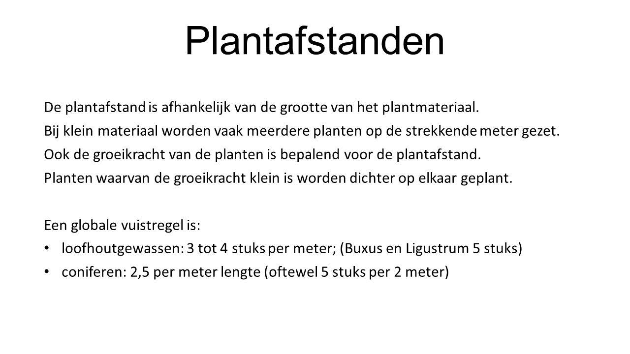 Plantafstanden De plantafstand is afhankelijk van de grootte van het plantmateriaal. Bij klein materiaal worden vaak meerdere planten op de strekkende