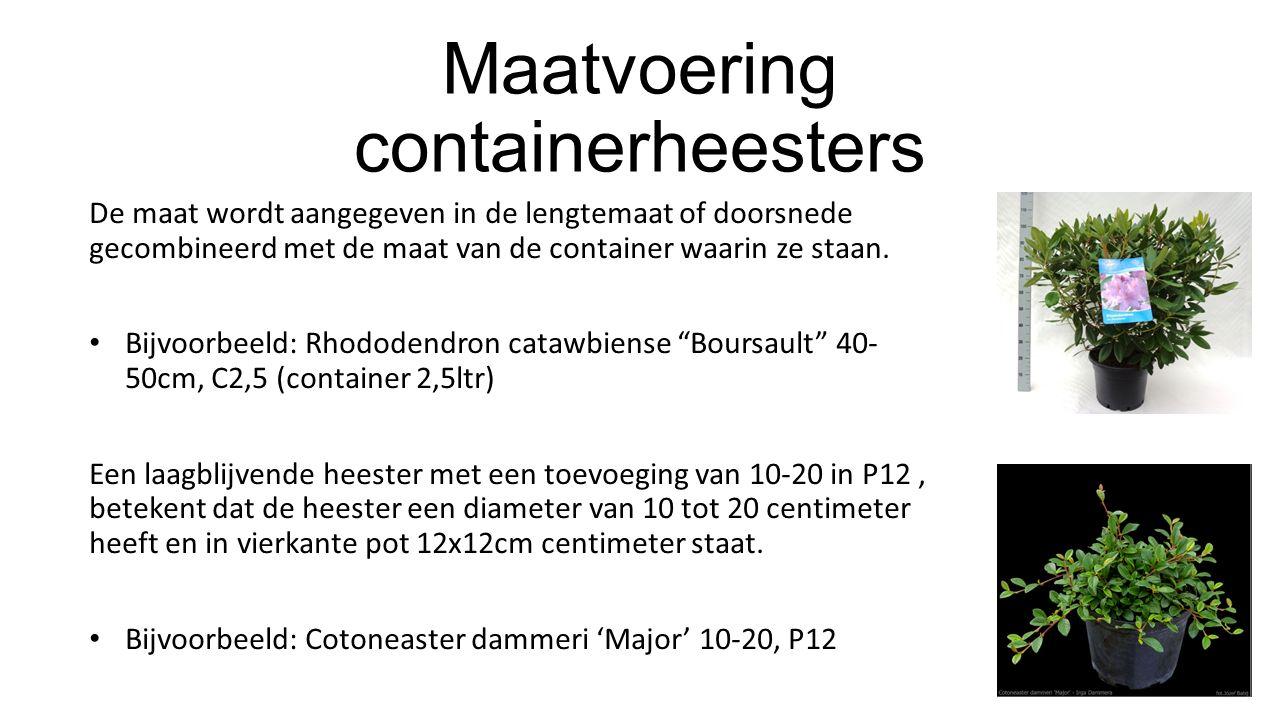 Maatvoering containerheesters De maat wordt aangegeven in de lengtemaat of doorsnede gecombineerd met de maat van de container waarin ze staan. Bijvoo