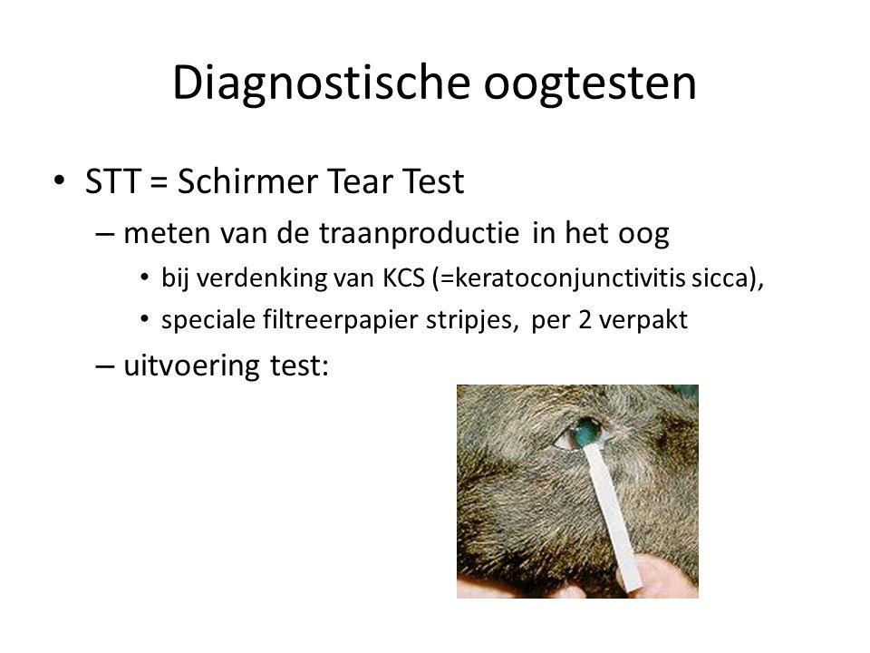 Diagnostische oogtesten STT = Schirmer Tear Test – meten van de traanproductie in het oog bij verdenking van KCS (=keratoconjunctivitis sicca), specia