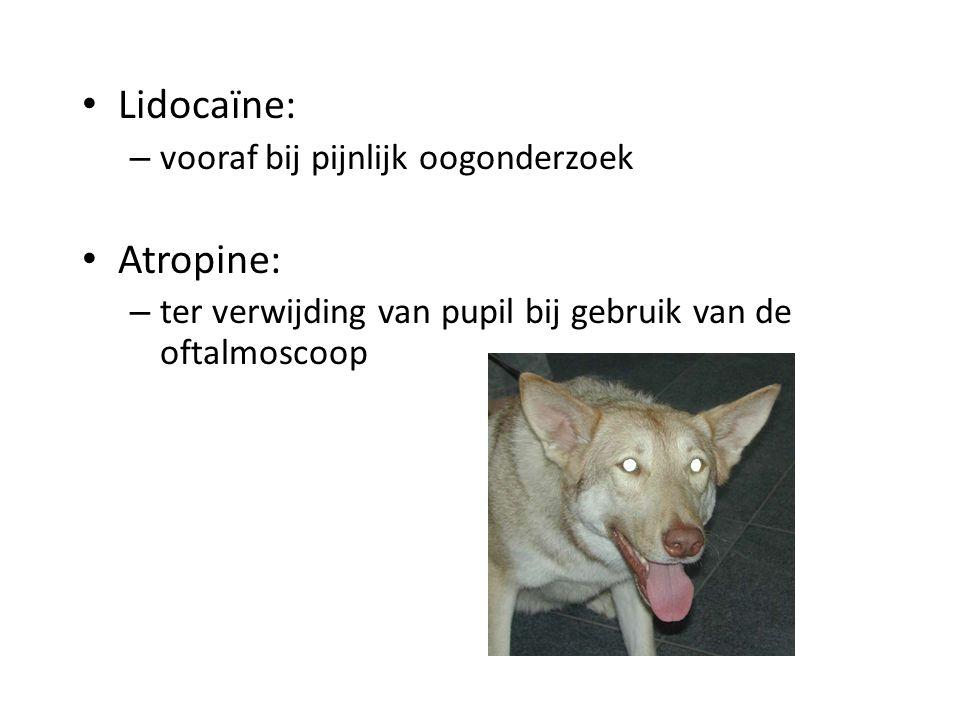 Lidocaïne: – vooraf bij pijnlijk oogonderzoek Atropine: – ter verwijding van pupil bij gebruik van de oftalmoscoop