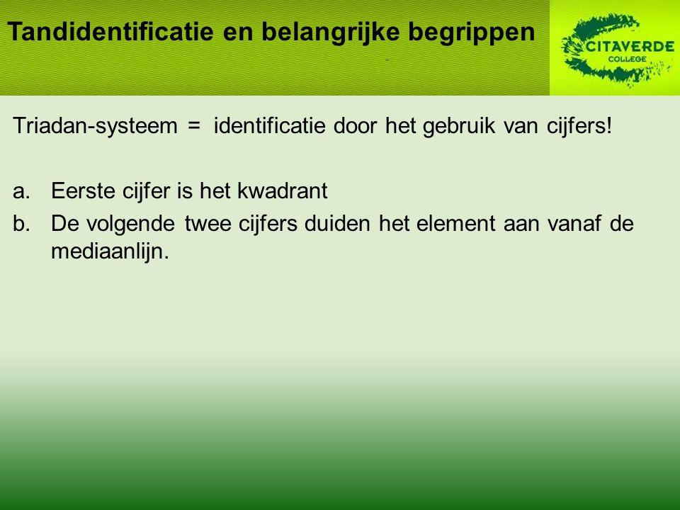 Triadan-systeem = identificatie door het gebruik van cijfers.