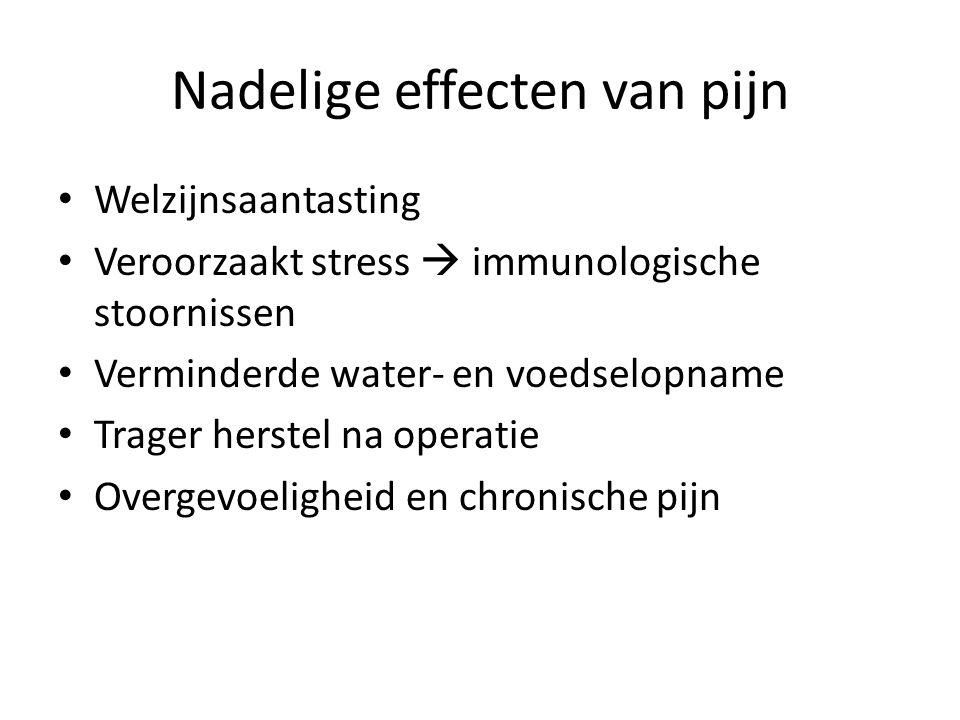 Nadelige effecten van pijn Welzijnsaantasting Veroorzaakt stress  immunologische stoornissen Verminderde water- en voedselopname Trager herstel na operatie Overgevoeligheid en chronische pijn