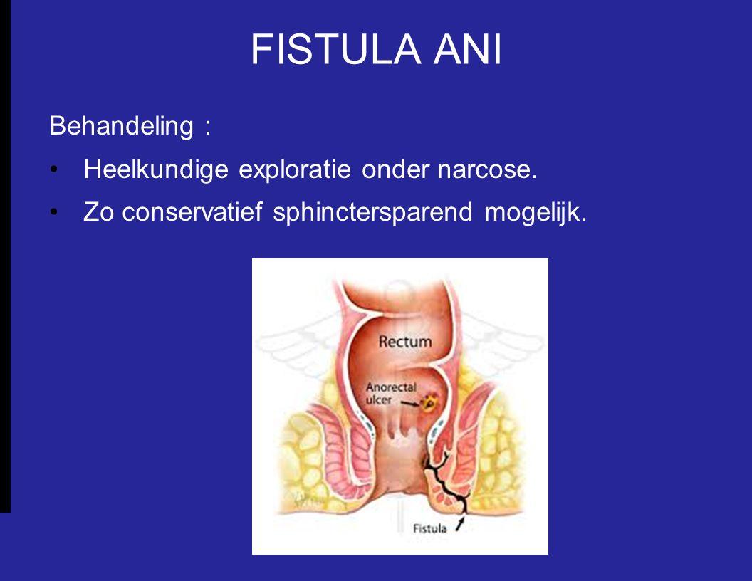 FISTULA ANI Behandeling : Heelkundige exploratie onder narcose. Zo conservatief sphinctersparend mogelijk.
