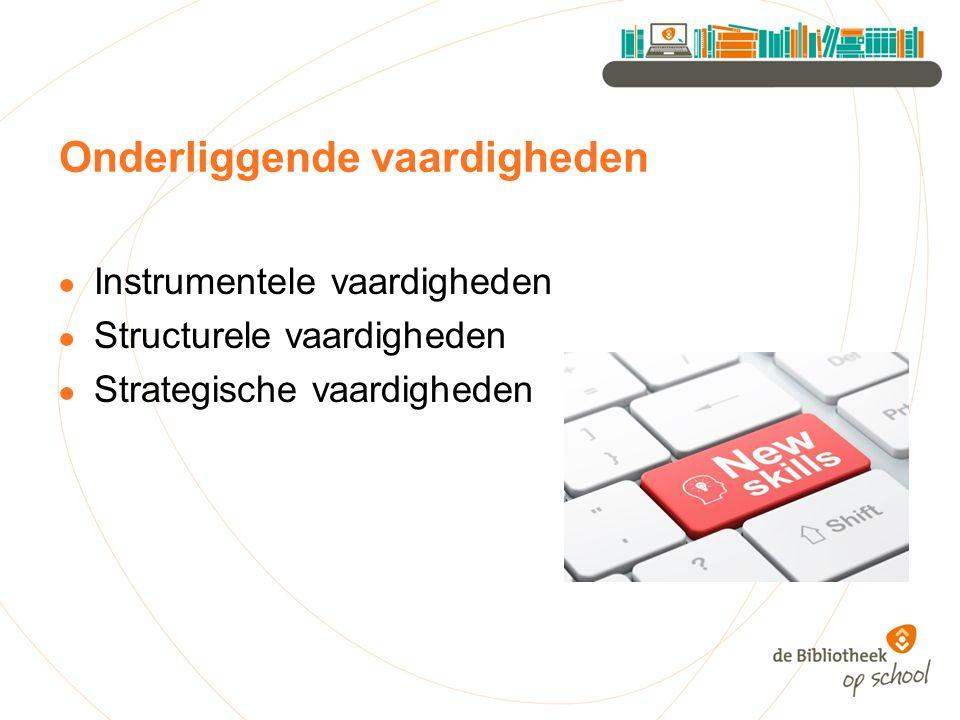 Onderliggende vaardigheden ● Instrumentele vaardigheden ● Structurele vaardigheden ● Strategische vaardigheden