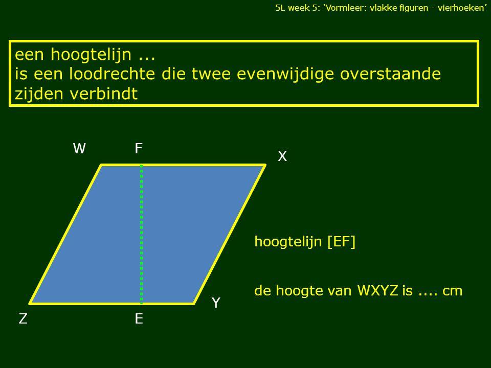 5L week 5: 'Vormleer: vlakke figuren - vierhoeken' een hoogtelijn... is een loodrechte die twee evenwijdige overstaande zijden verbindt DIAGONALEN Z W