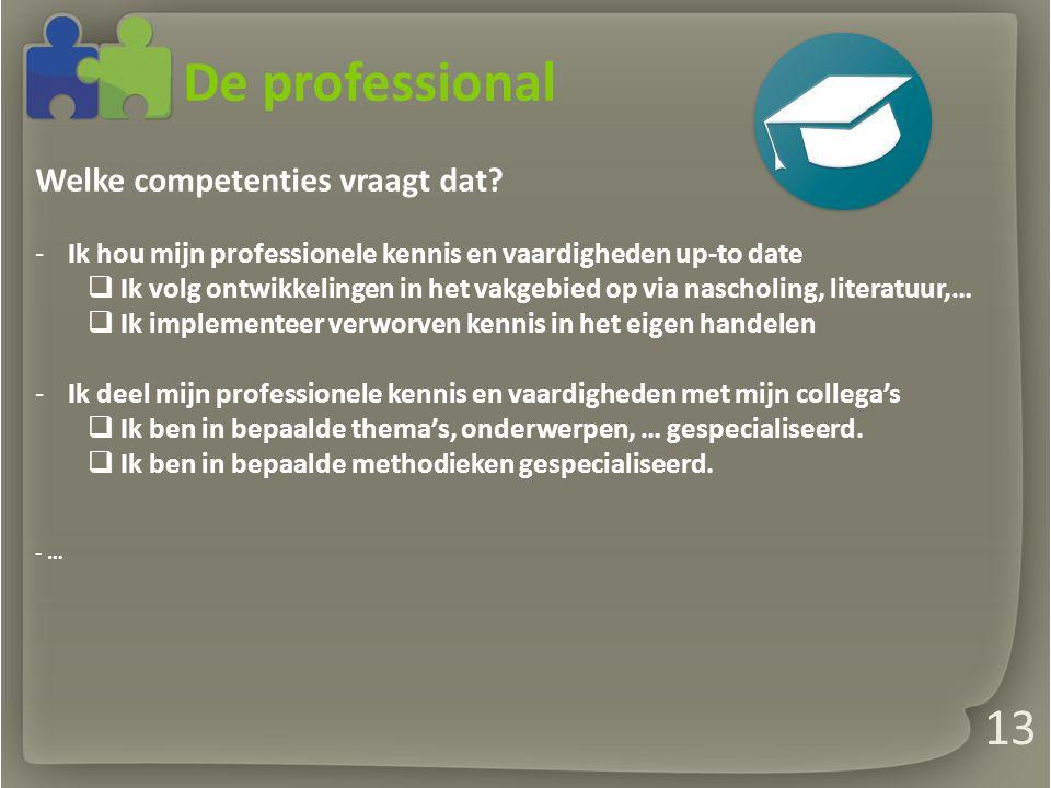 De professional Welke competenties vraagt dat.