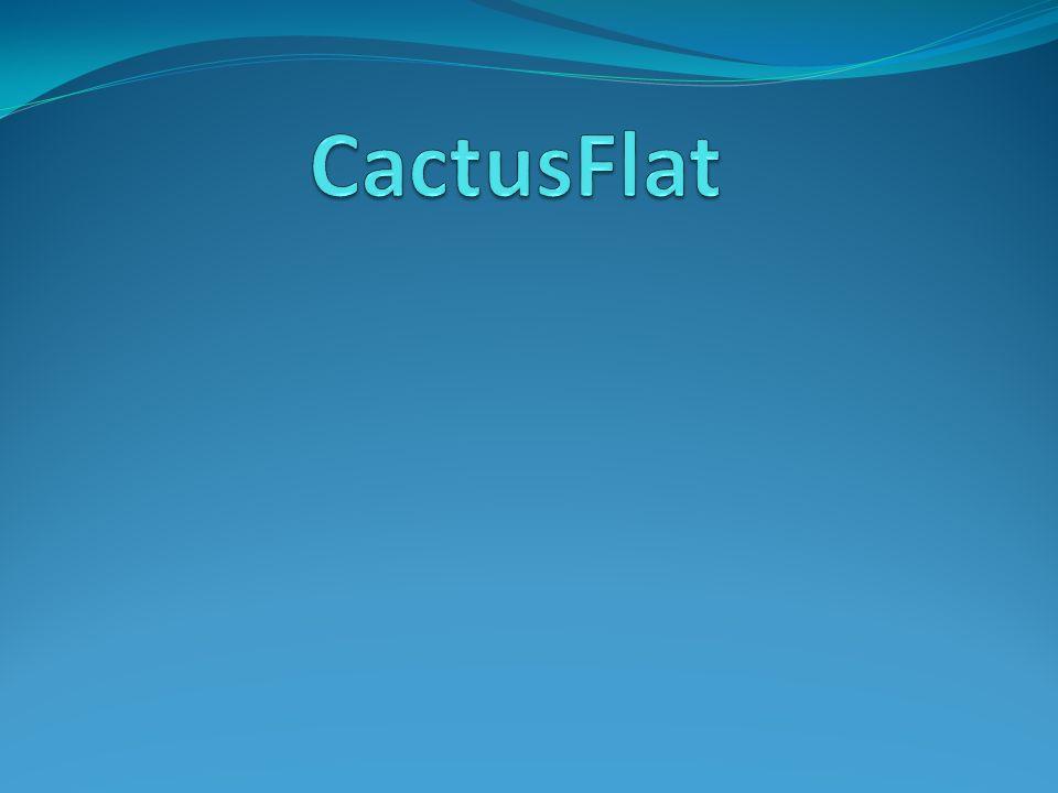 Inhoudstafel Wat is het? Werkwijze van het gebouw Waarom? Info over cactussen Filtersysteem Filmpje