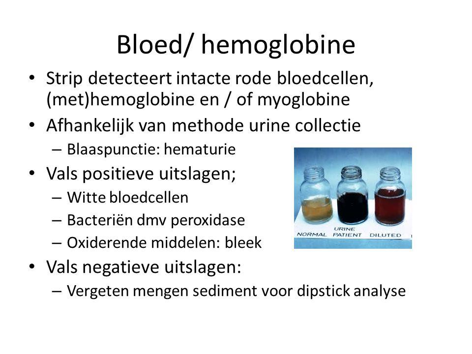 Bloed/ hemoglobine Strip detecteert intacte rode bloedcellen, (met)hemoglobine en / of myoglobine Afhankelijk van methode urine collectie – Blaaspunctie: hematurie Vals positieve uitslagen; – Witte bloedcellen – Bacteriën dmv peroxidase – Oxiderende middelen: bleek Vals negatieve uitslagen: – Vergeten mengen sediment voor dipstick analyse