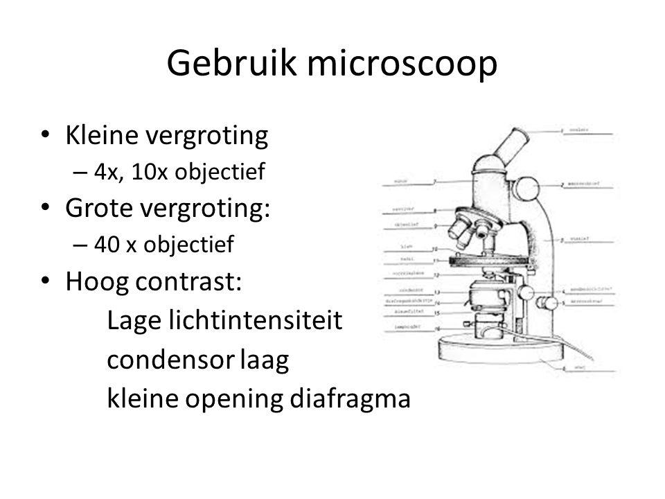 Gebruik microscoop Kleine vergroting – 4x, 10x objectief Grote vergroting: – 40 x objectief Hoog contrast: Lage lichtintensiteit condensor laag kleine opening diafragma