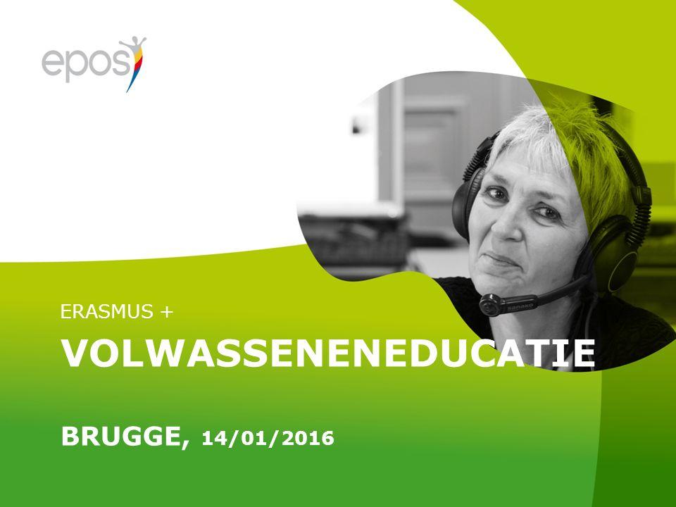 VOLWASSENENEDUCATIE BRUGGE, 14/01/2016 ERASMUS +