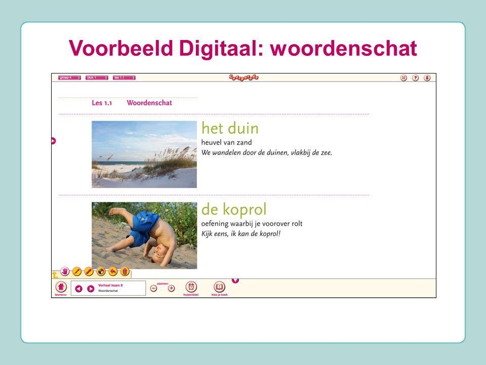 Voorbeeld Digitaal: woordenschat