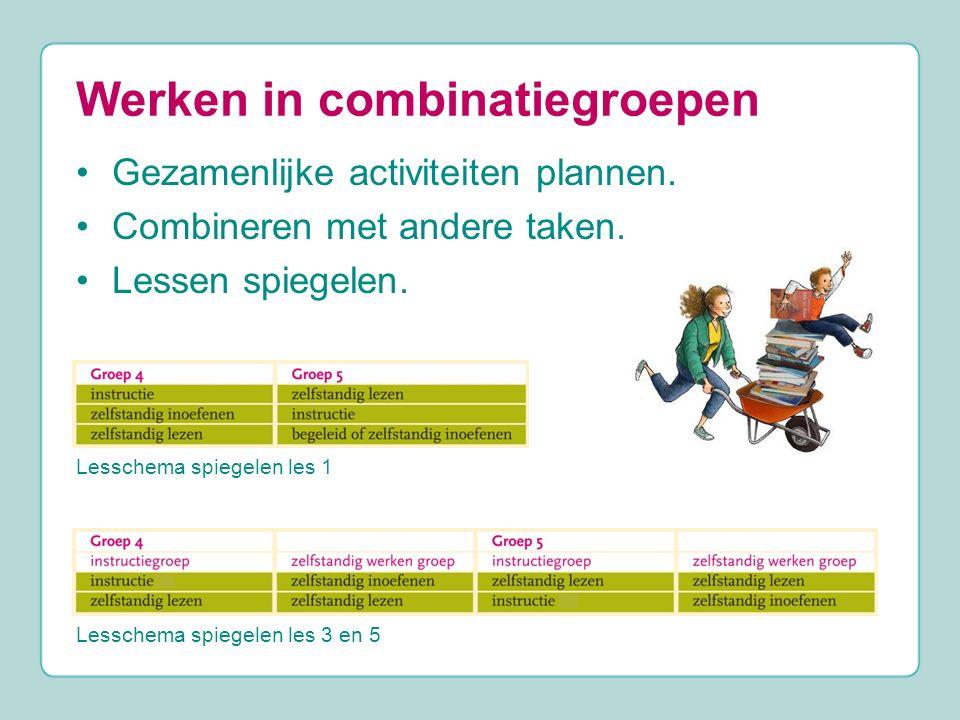 Werken in combinatiegroepen Gezamenlijke activiteiten plannen. Combineren met andere taken. Lessen spiegelen. Lesschema spiegelen les 1 Lesschema spie