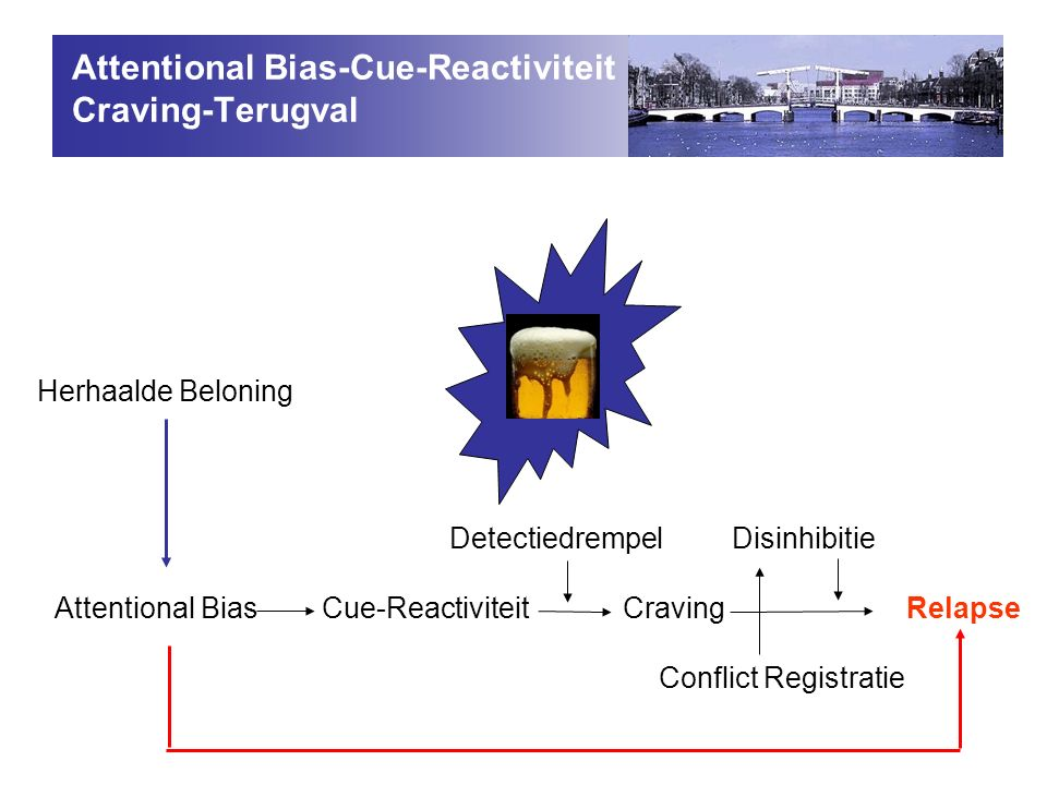 Detectiedrempel Disinhibitie Attentional Bias Cue-Reactiviteit Craving Relapse Conflict Registratie Herhaalde Beloning Attentional Bias-Cue-Reactiviteit Craving-Terugval